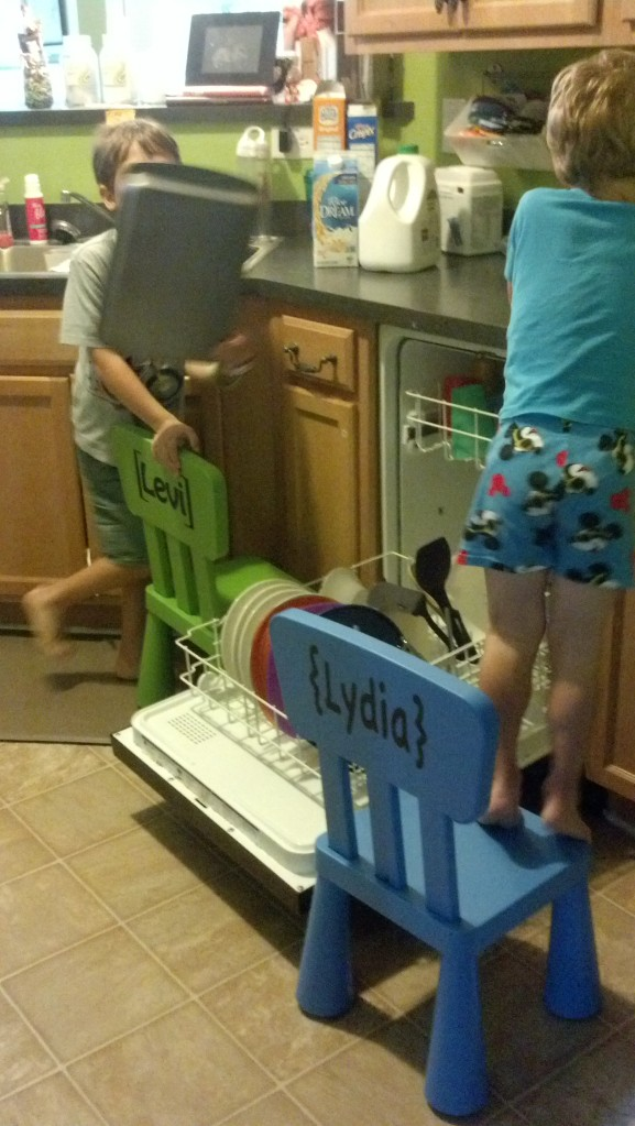 chores for the oldest 2